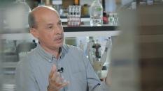 José Pintado Valverde